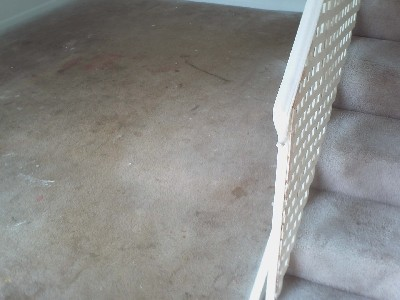 Before photo of dirty carpet