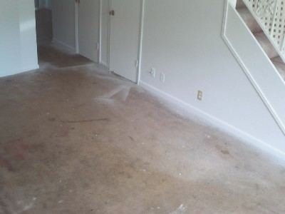 Before photo of carpet