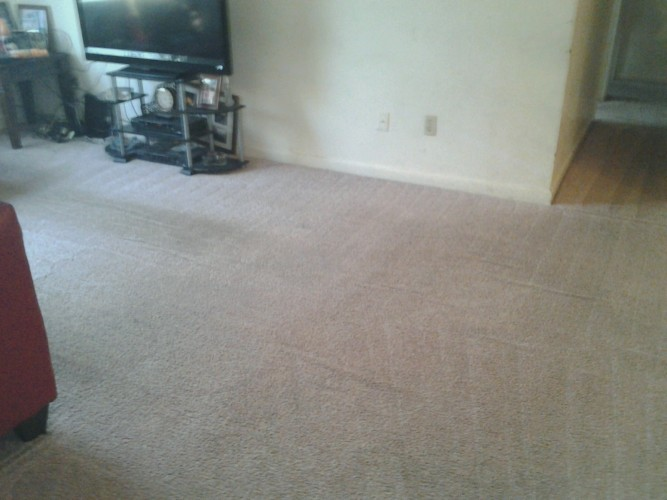 dirty carpet after photo