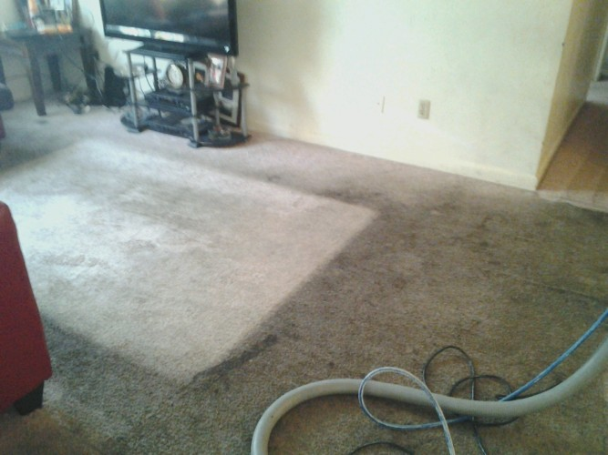 dirty carpet before photo